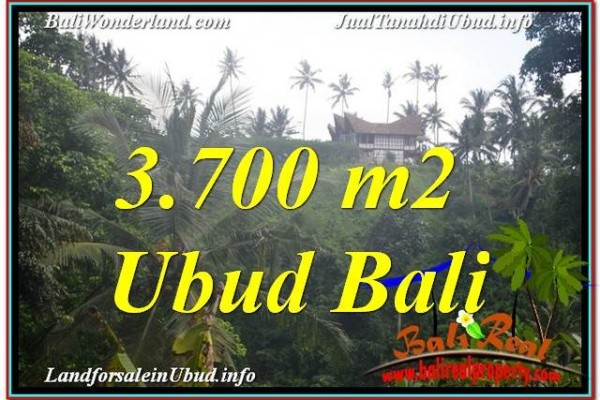 TANAH JUAL MURAH  UBUD BALI 37 Are View Tebing dan Sungai, Link. Villa