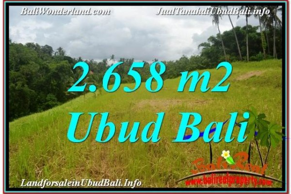 TANAH di UBUD JUAL MURAH 2,658 m2  View Tebing dan Sungai