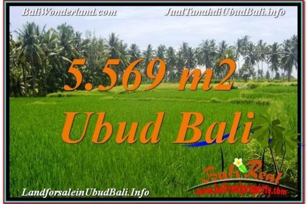 JUAL TANAH MURAH di UBUD BALI 5,569 m2 di Sentral / Ubud Center