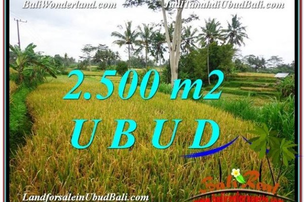 TANAH MURAH JUAL   UBUD 2,500 m2  View Sawah link Villa dan Restorant