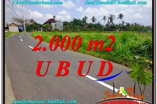 JUAL TANAH di UBUD 20 Are View  Sawah link Villa