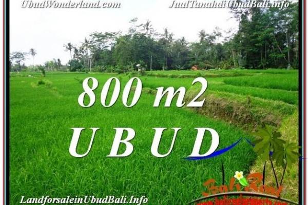 JUAL MURAH TANAH di UBUD 8 Are View  Sawah dan sungai