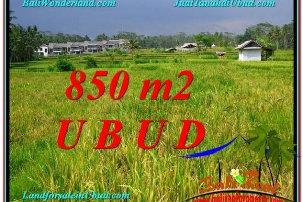 JUAL MURAH TANAH di UBUD 9 Are View  Sawah link Villa
