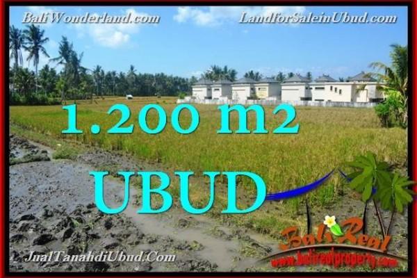JUAL TANAH MURAH di UBUD 1,200 m2 View Sawah link Villa