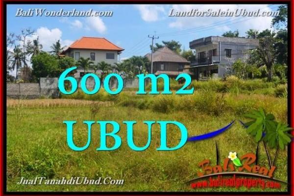JUAL MURAH TANAH di UBUD 600 m2 di Sentral Ubud