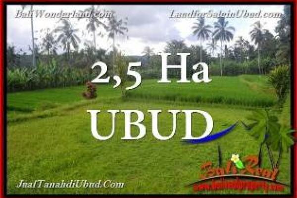 INVESTASI PROPERTI, JUAL TANAH MURAH di UBUD BALI INDONESIA TJUB655