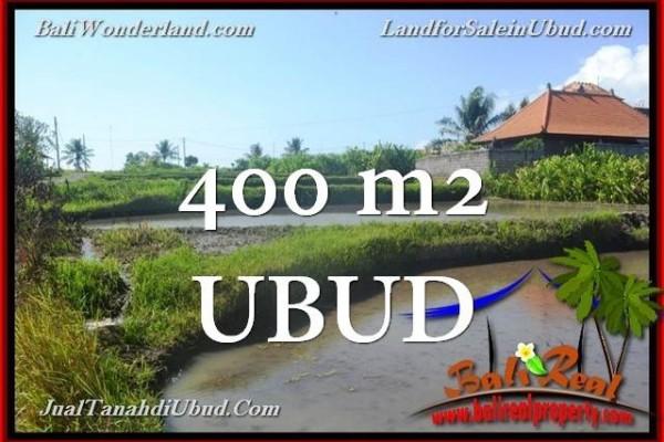 TANAH di UBUD BALI DIJUAL MURAH Untuk INVESTASI TJUB659