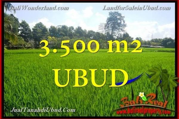 TANAH MURAH di UBUD 3,500 m2 di Ubud Gianyar