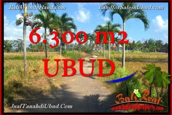 TANAH JUAL MURAH  UBUD BALI 6,300 m2  View Tebing link Villa