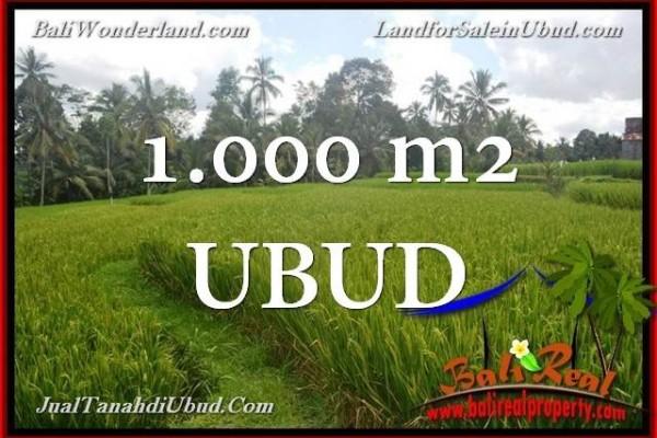 TANAH di UBUD DIJUAL MURAH 1,000 m2  View Sawah link Villa