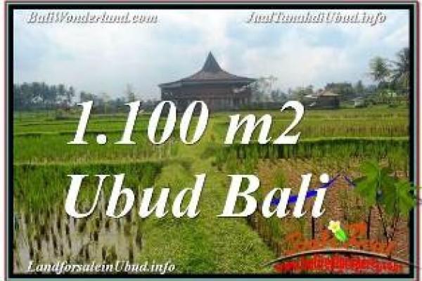 JUAL TANAH di UBUD BALI Untuk INVESTASI TJUB670