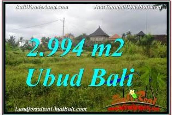 JUAL TANAH di UBUD 30 Are VIEW SAWAH DAN VILLA