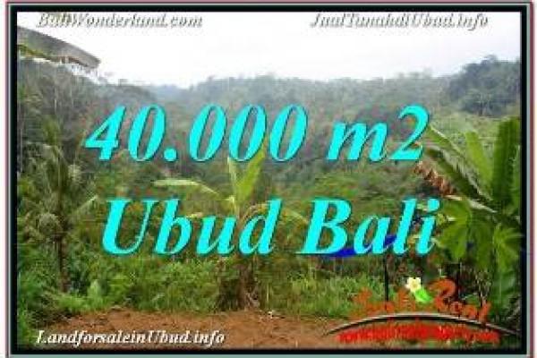 TANAH DIJUAL di UBUD 40,000 m2 VIEW SUNGAI DAN TEBING