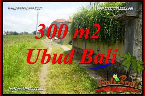 Investasi Properti, Tanah Murah Dijual di Ubud TJUB687