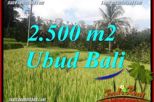 Tanah Murah di Ubud Bali Dijual TJUB690