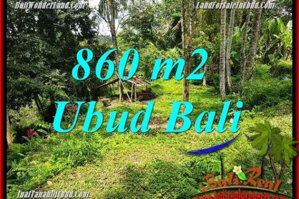 JUAL Tanah di Ubud Untuk Investasi TJUB691
