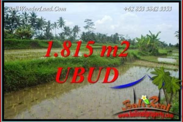 Tanah di Ubud Bali Dijual Murah TJUB703