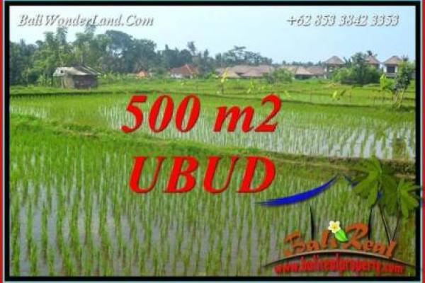 Investasi Property, jual Tanah di Ubud Bali TJUB708