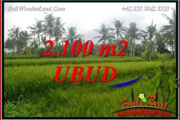Dijual Murah Tanah di Ubud Bali 2,100 m2 di Ubud Pejeng
