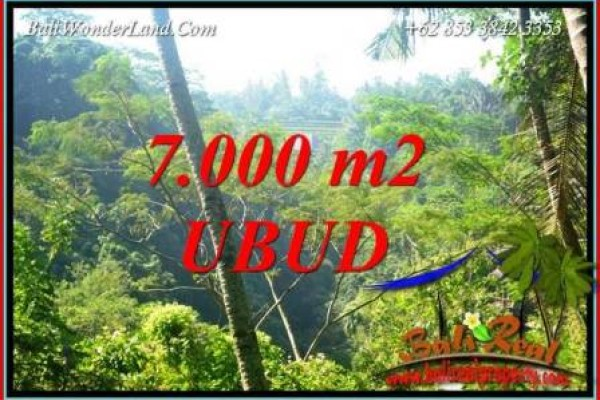 Tanah Dijual di Ubud Bali 70 Are View Tebing dan sungai