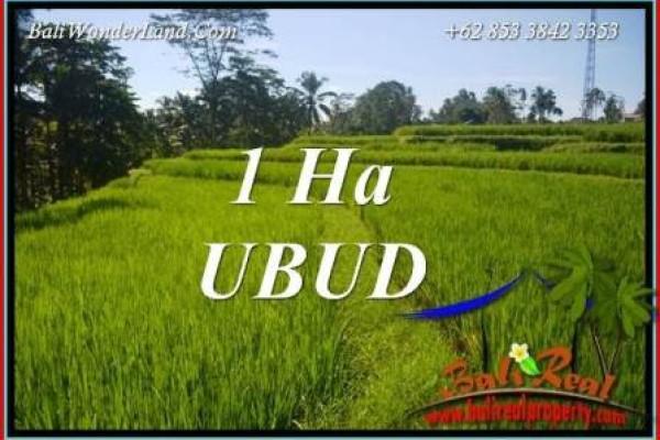 Tanah Murah di Ubud Bali Dijual 100 Are di Ubud Tegalalang