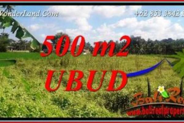 JUAL Tanah di Ubud Untuk Investasi TJUB724