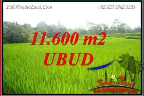 JUAL Murah Tanah di Ubud Bali Untuk Investasi TJUB732