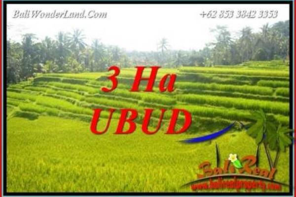 Investasi Property, jual Tanah Murah di Ubud TJUB733