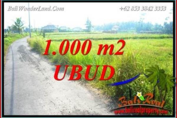 Dijual Tanah di Ubud Untuk Investasi TJUB739