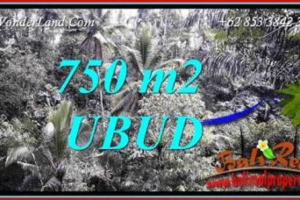 Tanah Murah Dijual di Ubud Bali 750 m2 di Ubud Tampak Siring