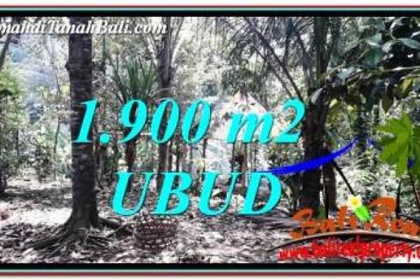 TANAH MURAH DIJUAL di UBUD 19 Are di Ubud Tampak Siring