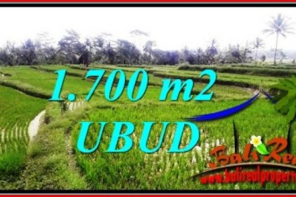 JUAL MURAH TANAH di UBUD BALI 1,700 m2  View sawah