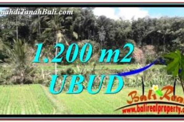 JUAL MURAH TANAH di UBUD BALI 1,200 m2 di Ubud Tegalalang