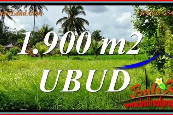 TANAH MURAH JUAL di UBUD BALI 19 Are View sawah, jungle dan sungai kecil