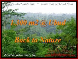 TANAH JUAL MURAH UBUD BALI 1,300 m2 View Tebing dan Kebun