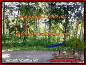 DIJUAL TANAH di UBUD BALI 2,000 m2 di Ubud Payangan