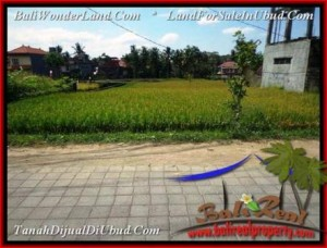 TANAH di UBUD BALI DIJUAL MURAH 1,500 m2 View Sawah link Villa