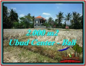 TANAH di UBUD DIJUAL MURAH 20 Are di Sentral Ubud