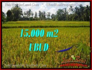 JUAL TANAH di UBUD BALI Untuk INVESTASI TJUB551