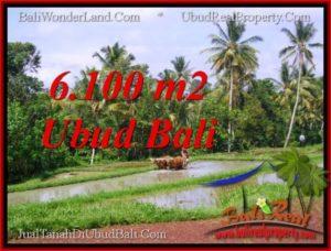 TANAH di UBUD DIJUAL MURAH Untuk INVESTASI TJUB552