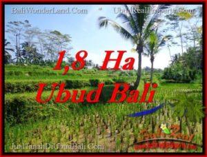 JUAL TANAH di UBUD BALI Untuk INVESTASI TJUB553