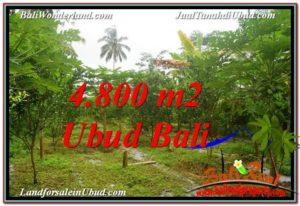 TANAH MURAH JUAL di UBUD BALI 4,800 m2 View Kebun dan Pangkung