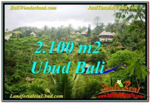 TANAH DIJUAL MURAH di UBUD BALI 2,100 m2 di Ubud Payangan