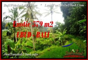TANAH MURAH JUAL UBUD 5.79 Are View Sawah dan sungai