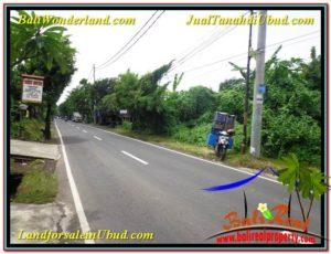 JUAL TANAH di UBUD BALI 2,200 m2 Pinggir Jalan Raya