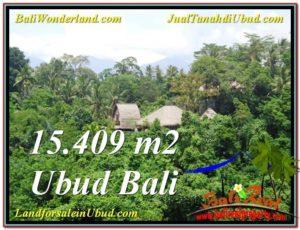INVESTASI PROPERTY, JUAL TANAH MURAH di UBUD BALI TJUB568