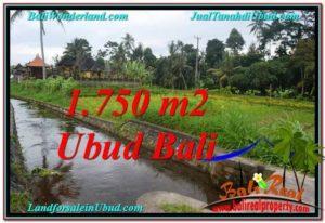 JUAL TANAH di UBUD BALI 7.15 Are di Ubud Tampak Siring