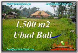 JUAL TANAH di UBUD BALI 15 Are di Ubud Tampak Siring