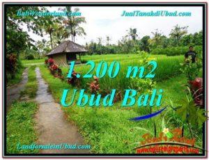 DIJUAL MURAH TANAH di UBUD BALI Untuk INVESTASI TJUB559