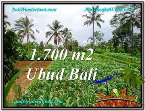 DIJUAL MURAH TANAH di UBUD BALI Untuk INVESTASI TJUB560